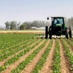The Minister for Agriculture and Rural Development, Chief Audu Ogbeh urges banks to increase agric funding