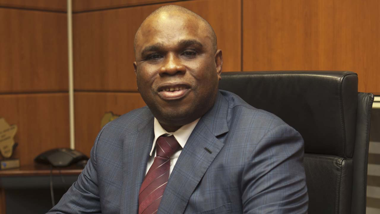 How Nigeria, others shared African Export-Import Bank (Afreximbank)'s $65b loan syndications