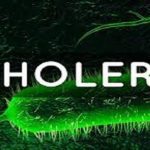 Cholera: Adamawa state records 1,564 cases