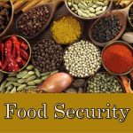 Science and Technology paramount in sustenance of food security in Africa – Experts