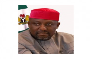 Cattle ranching: Fear grips Imo communities over Okorocha's silence